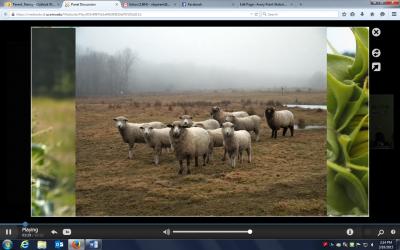 Screenshot Jamie.docx