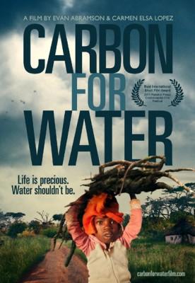 Water-AbramsonCarbonforWater